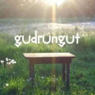 blog_gudrun_gut_cover