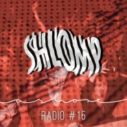 radio-15-shlomp-scgrafik
