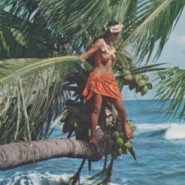 tahiti-bora-bora-african-island-girl-lady-original-tahitian-photo-postcard-14333-p1