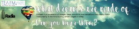 radia_s38_n626_tea-fm_what-dreams-are-made-of_banner_